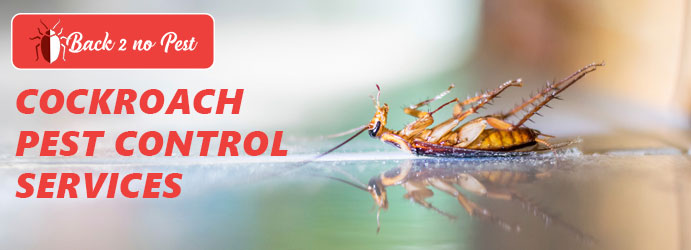 Cockroach Pest Control Gardenvale West